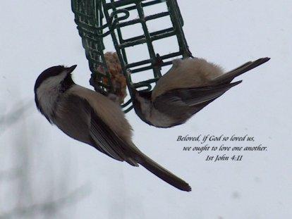 1 John 4 11